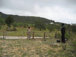 Arreglando la valla p