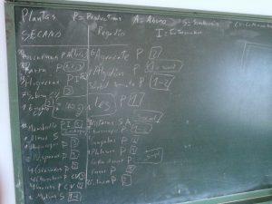 Lista de plantas p