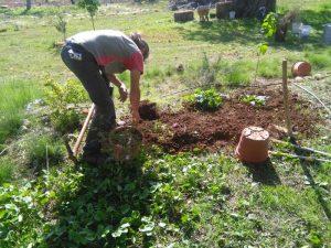 06-jardinerando